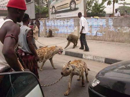 nigerians2.jpg